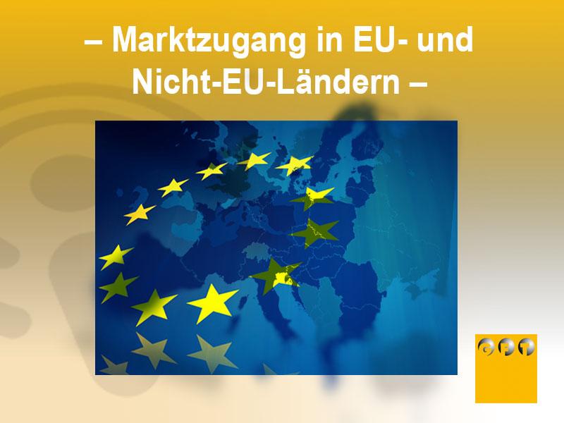 MZ #001 Marktzugang In EU- Und Nicht-EU-Ländern