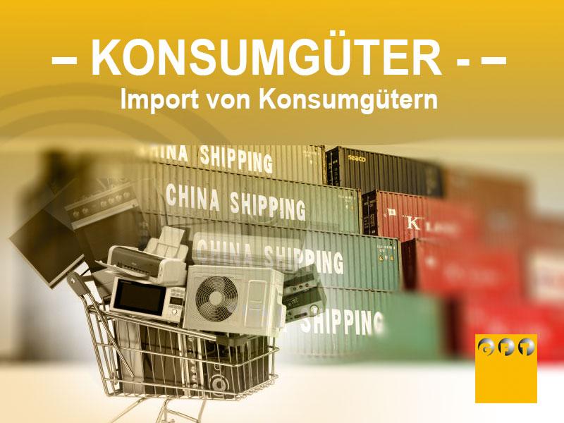 KG #004 Import Und Verkauf Von Konsumgütern Aus Drittländern
